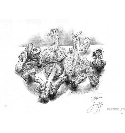 Günter Grass / Verschiedene Pilze  / handsigniert